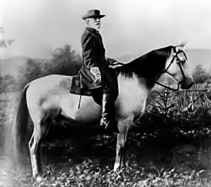 General Robert E. Lee and his horse, Traveler. Traveler was a gray American Saddlebred of 16 hands, notable for speed,strength and courage in combat. Greatly admired for his high springy walk, he needed neither whip or spur but always had such vim and eagerness. He could also be a difficult horse but he and General Lee had a special bond.
